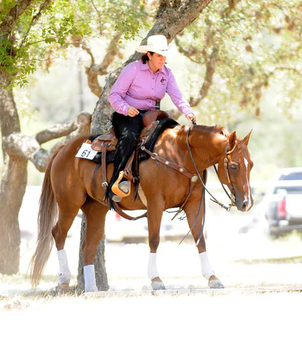 10 Tips To Improve Your Scores In Ranch Horse Trail Showing Articles Anti Gimmick Horsemanship